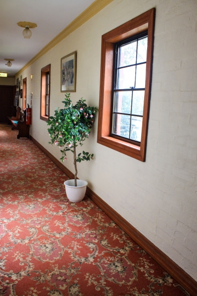 Hall way outside of rooms